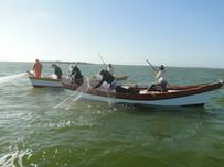 Pescadores artesanais de São Pedro da Aldeia devem dar entrada no seguro neste período de defeso