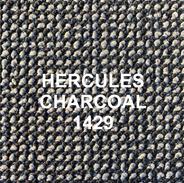 HERCULES CHARCOAL 1429.png