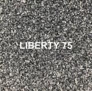 LIBERTY 73.png