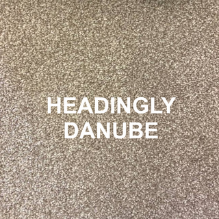 HEADINGLY DANUBE.png