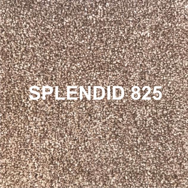 SPLENDID 825.png