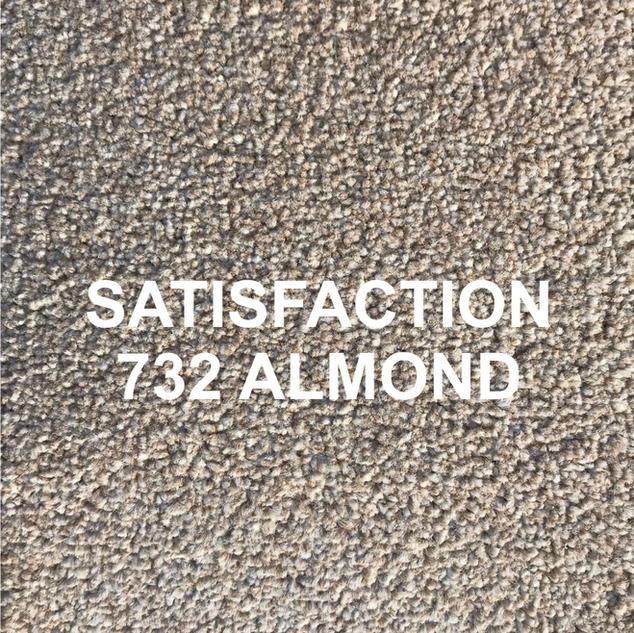 SATISFACTION 732 ALMOND.png