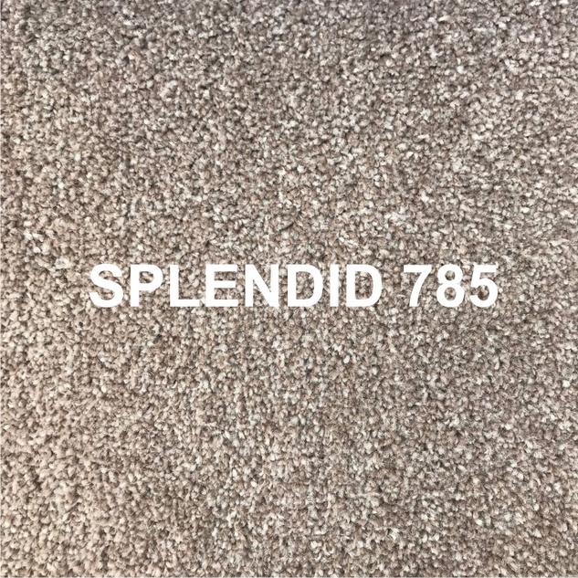 SPLENDID 785.png