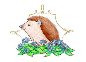 """Andrew's Hedgehog"""