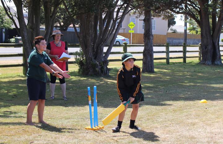 Non stop cricket.jpg