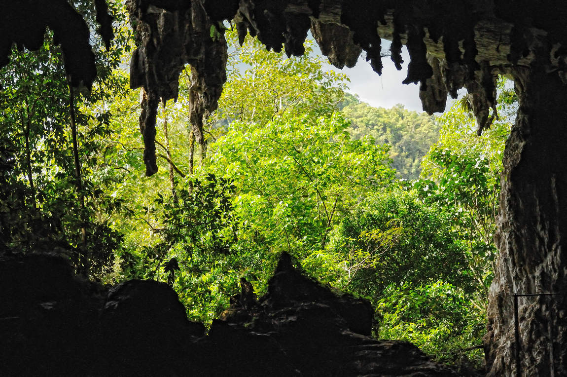 Jaskinie Niah, Borneo