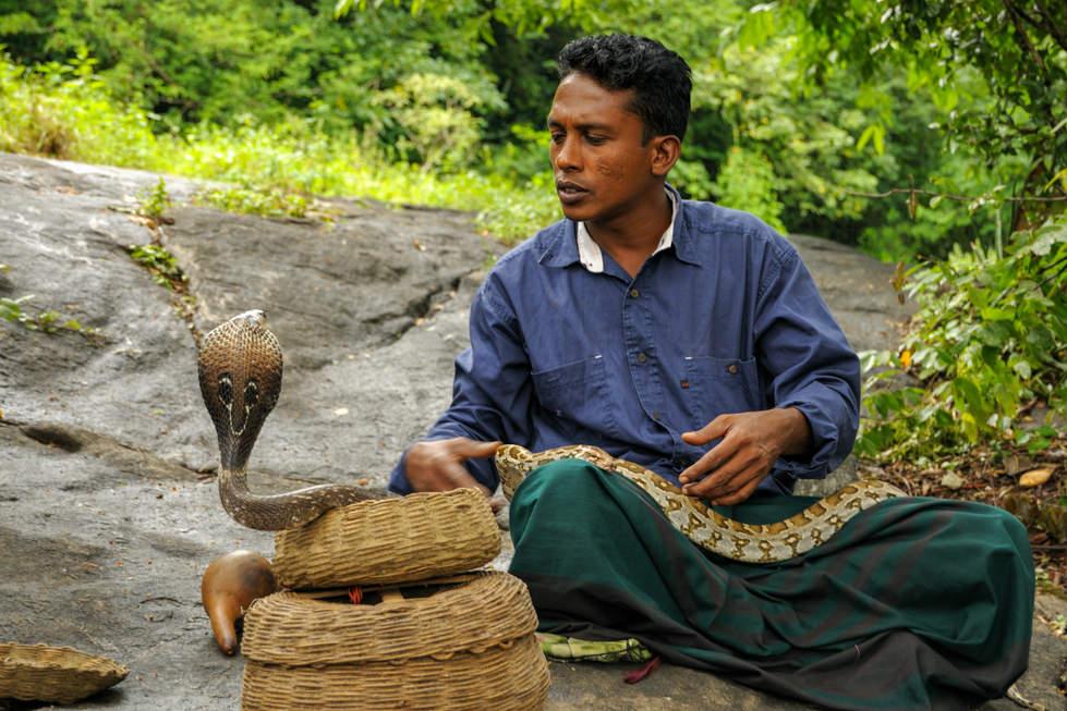 Zaklinacz węży, Dambulla, Sri Lanka