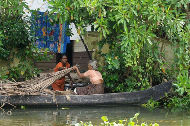 Życie na rozlewiskach Kerali