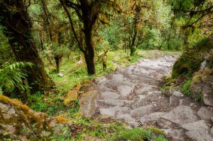 Ścieżka na trasie Annapurna BC