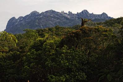 Najwyższy szczyt Malezji - Kinabalu
