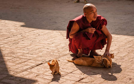 Klasztor Mahagandayon, Mandalay, Myanmar