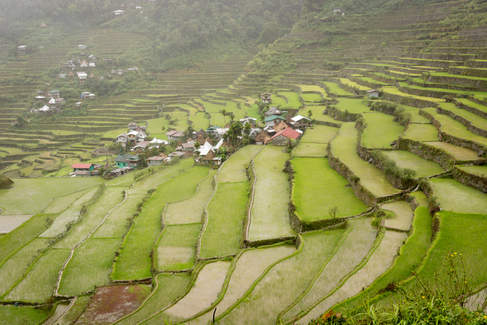 Tarasy ryżowe, Banaue