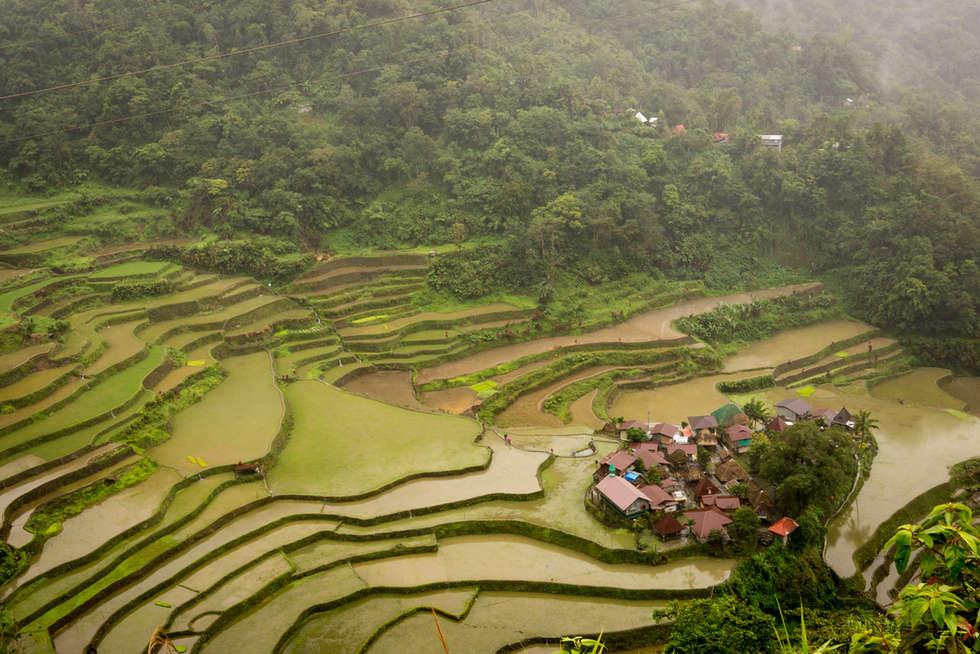 Filipiny.2015-221.jpg