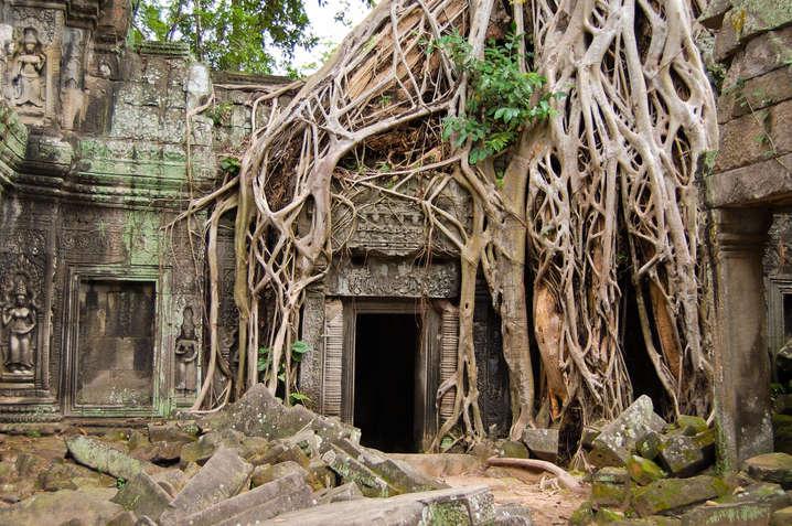 Świątynia Ta Prohm, Kambodża. Fotografia Maciej Rutkowski