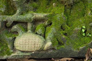 kamienny żółw w Beng Mealea