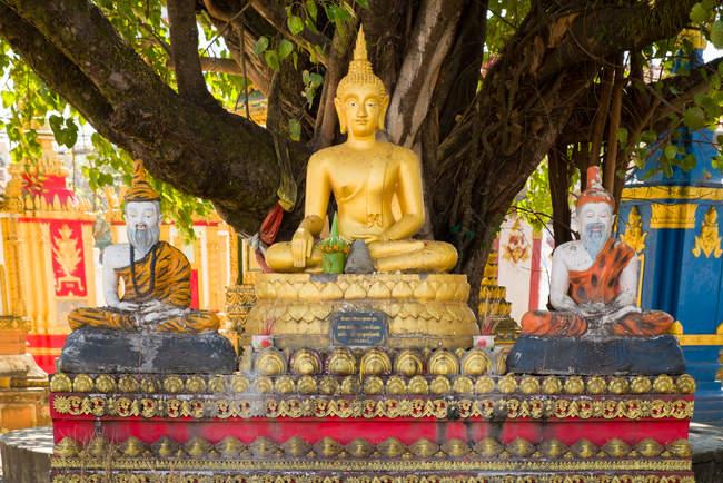 Budda, Wat Pha Bat, Pakse