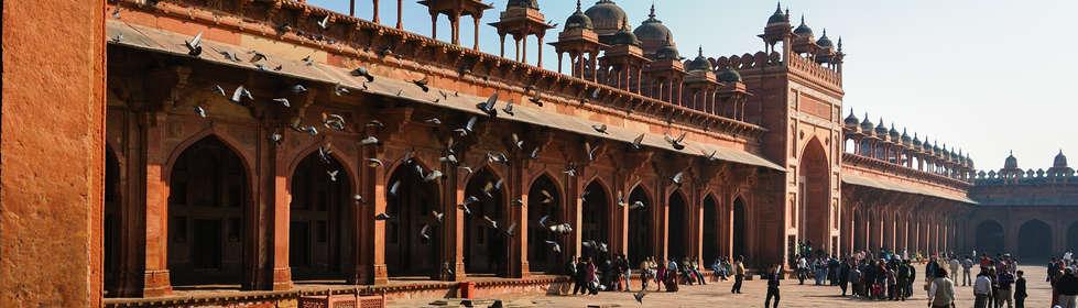 Indie_0096.jpg