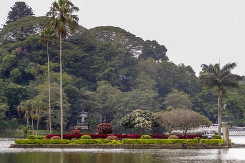 Jezioro, Kandy, Sri Lanka