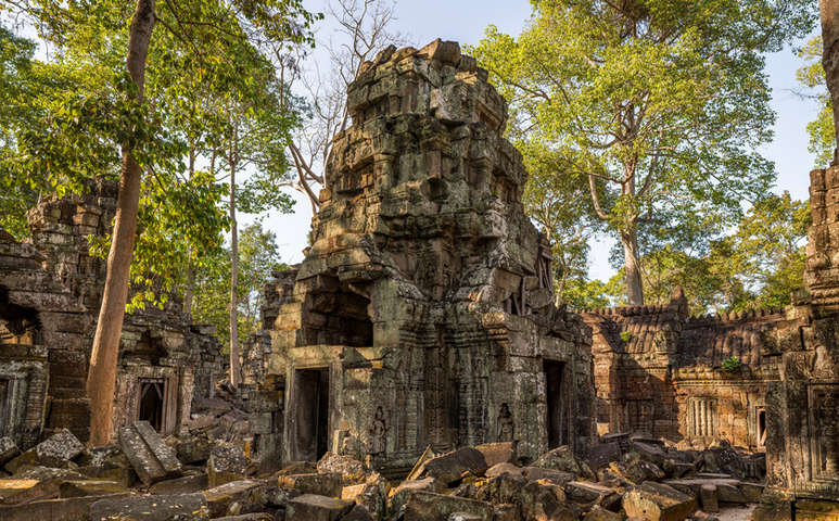 Świątynia Ta Nei, Angkor, Kambodża. Fotografia Maciej Rutkowski