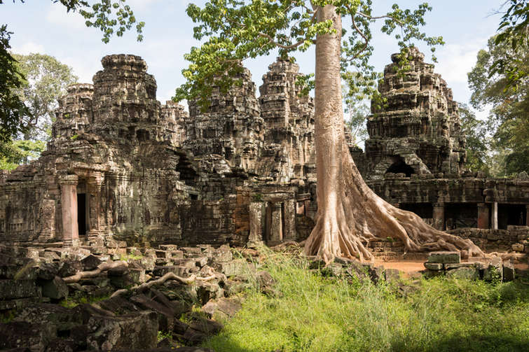 Świątynia Banteay Kdei, Angkor, Kambodża. Fotografia Maciej Rutkowski