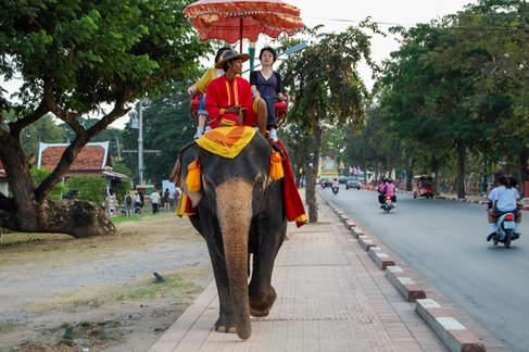 Jazda na słoniu, Ayutthaya
