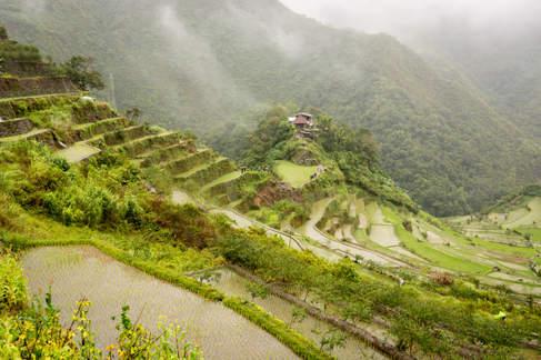 Tarasy ryżowe, Filipiny