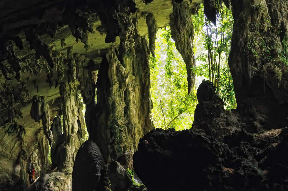 Jaskinie Niah, Sarawak, Borneo