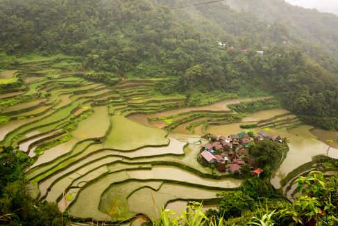 Tarasy ryżowe w Batad, Filipiny