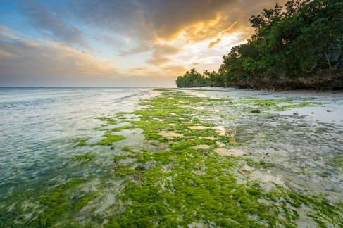 Półwysep Anda, Bohol