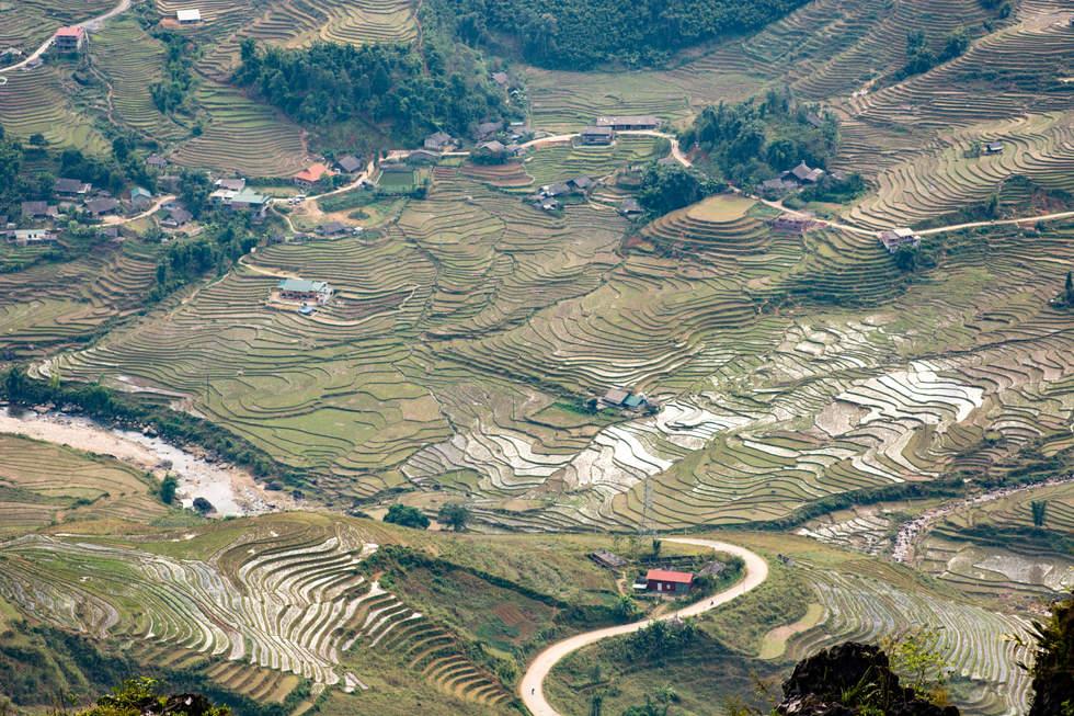 Tarasy ryżowe niedaleko Sapa
