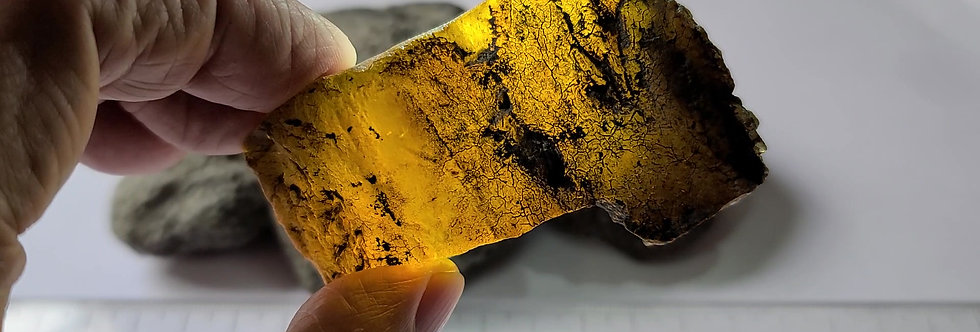 166 grams of RAW UNSEARCHED Chiapas Amber.