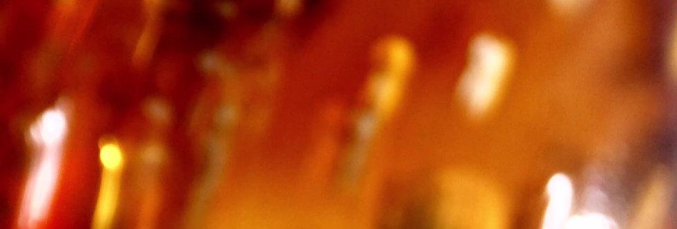 RARE 3 Cretaceous Chordeumatida Millipedes in amber.