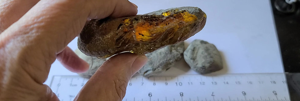 119 grams of RAW UNSEARCHED Chiapas Amber.