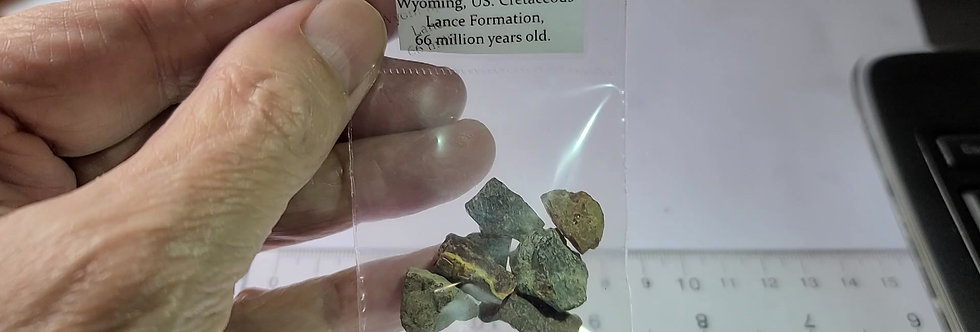 RARE CRETACEOUS Amber from Wyoming, USA!
