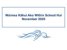 Within School Inquiries 2020.jpg