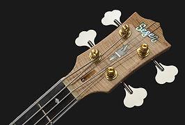 ZC Bass 3