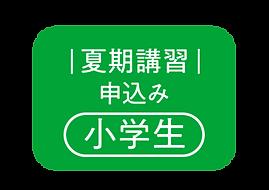 勧学院_夏期講習_小学生フォームボタン.png