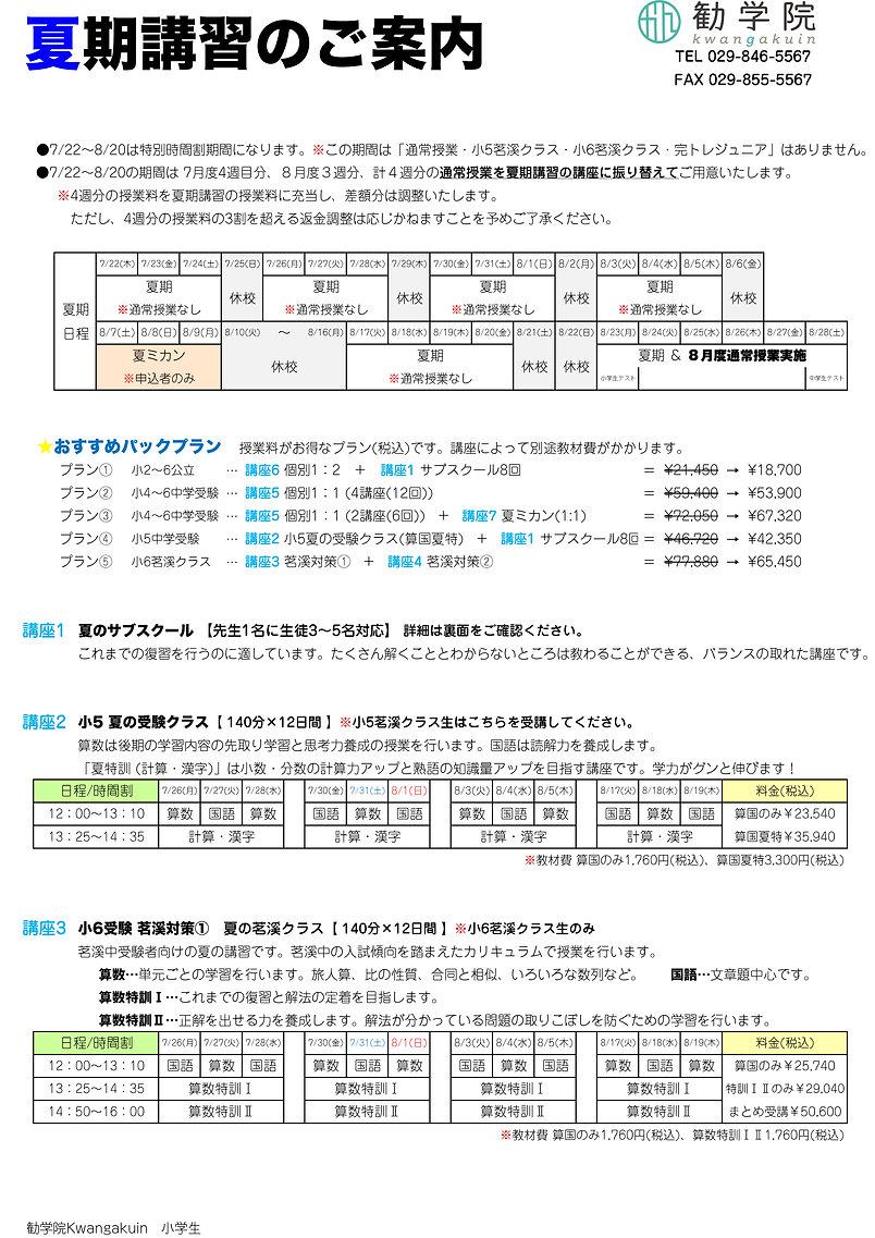 2021-夏特案内(決定稿)-小学生1.jpg