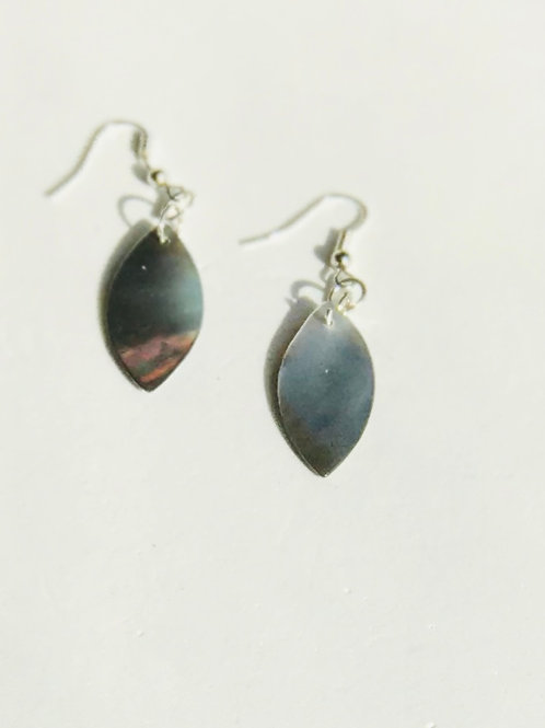 Gray Shell Earrings
