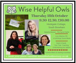 Wise Helpful Owls