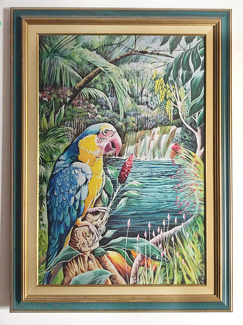 Parrot Haven | K Patrick Byles