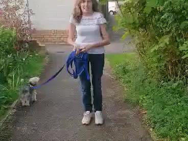 Lets learn 'Loose lead walking !'