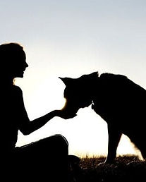 dog behaviourist trainer near me