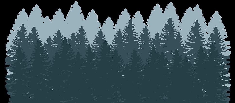 mežs-01.png