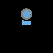 BSC Logo.png