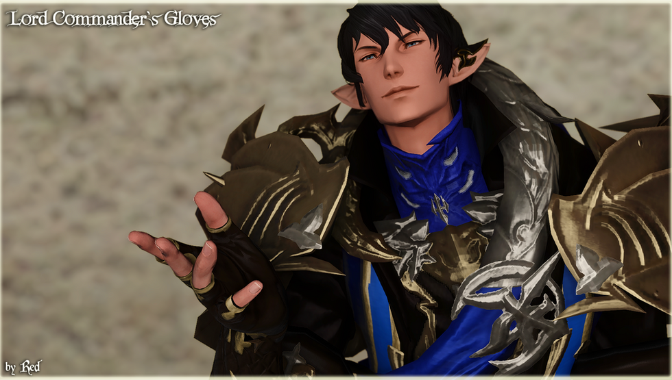 Lord Commander's Gloves (TB2.0)