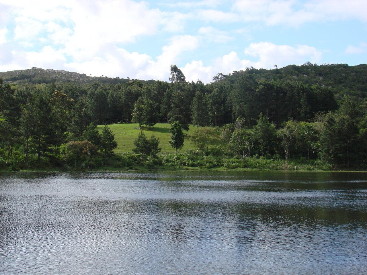 Wild Pampa Nature