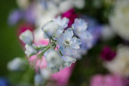 Bucks County Roses Flower Arrangement