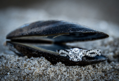 Engagement ring in shell