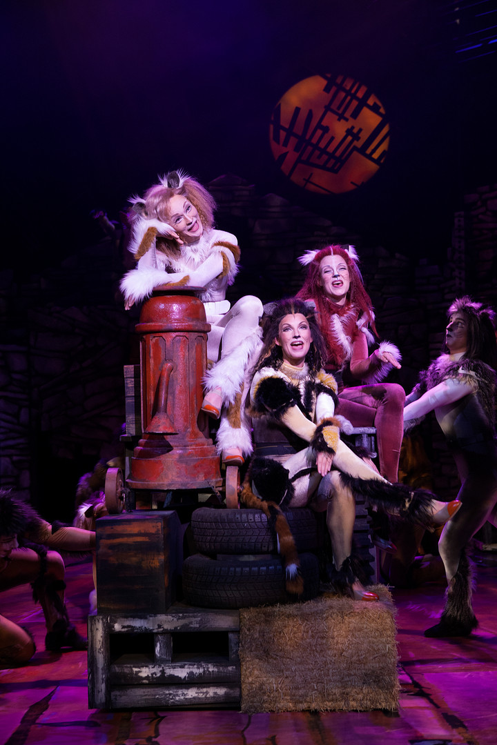 CATS MUSICAL 2017-2018